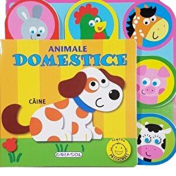 Pentru prichindei - animale domestice/***