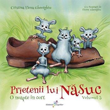 Prietenii lui Nasuc vol.3-O noapte in cort/Cristina Elena Gheorghiu