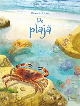 Pe plaja (Usborne)/Usborne Books