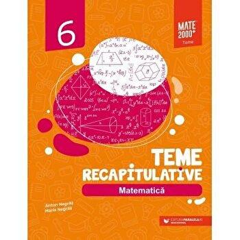 Matematica. Teme recapitulative. Clasa a VI-a/Anton Negrila, Maria Negrila imagine