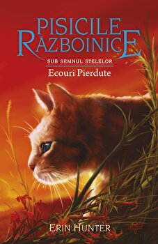 Pisicile Razboinice - Sub semnul stelelor. Cartea a XX-a: Ecouri Pierdute/Erin Hunter imagine elefant.ro 2021-2022