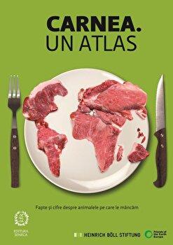 Carnea. Un atlas/Heinrich Boll Stiftung imagine