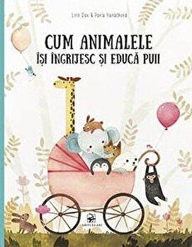 Imagine Cum Animalele Isi Ingrijesc Si Educa Puii - pavla Hanackova