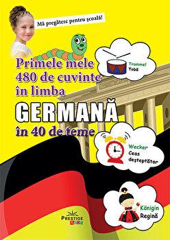 Primele 48 de cuvinte germana/***