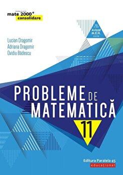 Probleme de matematica pentru clasa a XI-a/Lucian Dragomir, Adriana Dragomir, Ovidiu Badescu