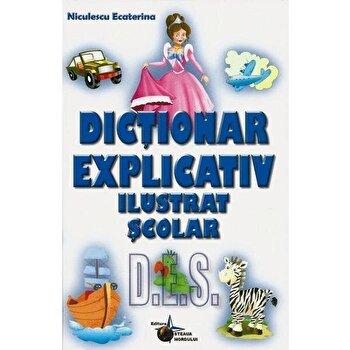 Dictionar explicativ ilustrat/Ecaterina Niculescu