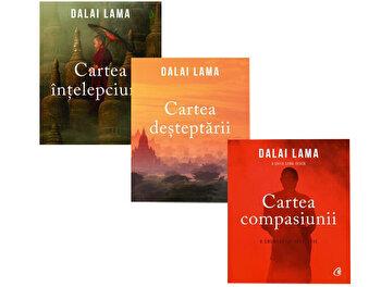 Pachet Mesaje intelepte/Dalai Lama imagine elefant.ro 2021-2022