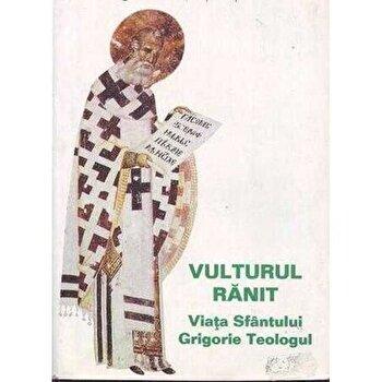 Vulturul ranit, viata Sfantului Grigorie Teologul. Editia a II - a/Stelianos Papadopoulos poza cate