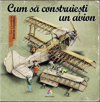 Cum sa construiesti un avion/Martin Sodomka