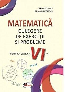 Matematica culegere clasa 6/Ioan Pelteacu, Elefterie Petrescu