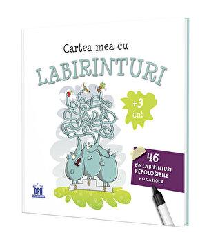 Cartea mea cu labirinturi/Didactica Publishing House
