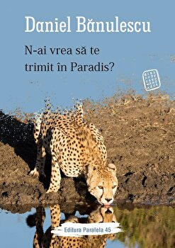 N-ai vrea sa te trimit in Paradis?/Daniel Banulescu imagine
