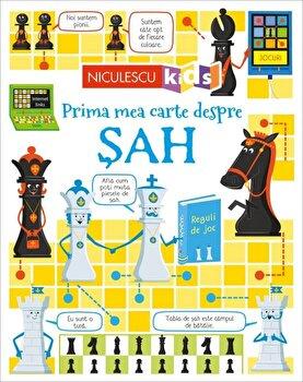 Prima mea carte despre SAH/Katie Danes