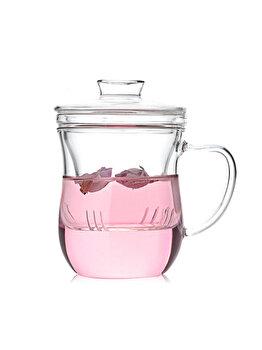Ceainic cu infuzor Quasar&Co., 380 ml, tee for one, sticla, termorezistent, transparent