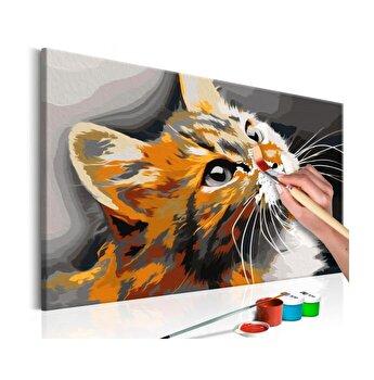 Pictura pe numere - Red Cat - 60 x 40 cm