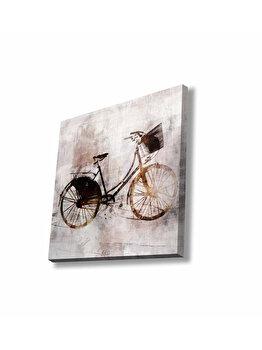 Tablou decorativ, Glory, 887GLR1064, 45 x 45 cm, CANVAS, Multicolor elefant