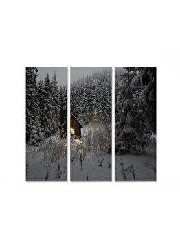 Tablou decorativ, Bianca, 553BNC1198, 3 piese, 70 x 50 cm, MDF, Multicolor imagine
