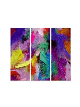 Tablou decorativ, Bianca, 553BNC1243, 3 piese, 70 x 50 cm, MDF, Multicolor imagine