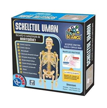 Joc educativ - Scheletul uman
