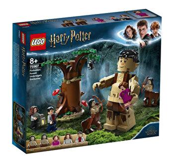 LEGO Harry Potter - Padurea interzisa: intâlnirea dintre Grawp si Umbridge 75967