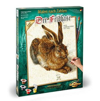 Kit pictura pe numere Schipper - Young Hare de Albrecht Durer