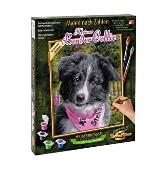Kit pictura pe numere Schipper - Catelus Border Collie
