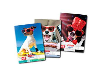 Set 10 caiete A5, patratele, 48 file, colturi rotunjite, motiv Cool Dog