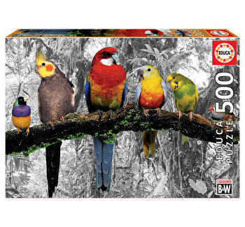 Puzzle Birds In The Jungle - Coloured B&W, 500 piese