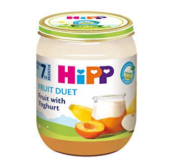 Fruit-duet iaurt cu fructe 160gr, HiPP poza