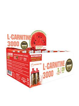 GOLDNUTRITION L-CARNITINA PEPENE ROSU 3000 20 DZ de la GoldNutrition