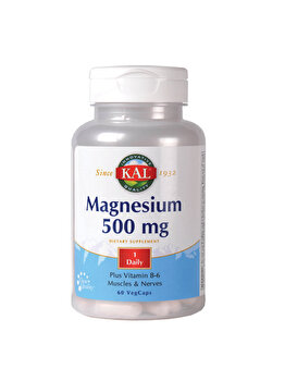 Supliment alimentar KAL by Secom Magnesium 500mg 60 capsule de la KAL by Secom