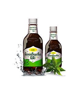 Bautura soc Kombucha Life, 500 ml de la Kombucha Life
