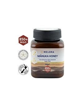 Miere de Manuka MELORA MGO 850+ 250 g naturala de la MANUKA MELORA