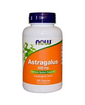 Now Foods Astragalus, 500 mg, 100 Capsule Now Food
