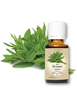 Ulei esential de Menta (Mentha Piperita) 10 ml, Homemade Spa de la Homemade Spa