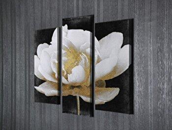 Tablou decorativ Majestic, 257MJS1455, canvas 100 procente, 3 piese, 40 x 20 cm
