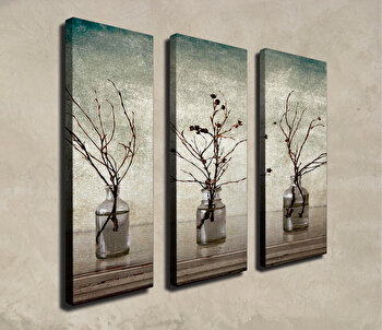Tablou decorativ, Vega, Canvas 100 procente, lemn 100 procente, 3 piese, 66 x 70 cm, 265VGA1159, Multicolor