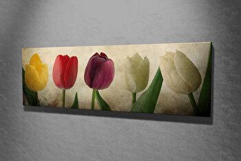 Tablou decorativ, Vega, Canvas 100 procente, lemn 100 procente, 30 x 80 cm, 265VGA1116, Multicolor