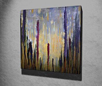 Tablou decorativ, Vega, Canvas 100 procente, lemn 100 procente, 45 x 45 cm, 265VGA1209, Multicolor