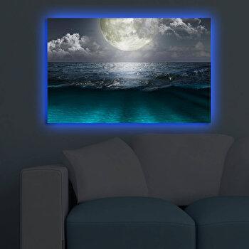Tablou decorativ canvas cu leduri Shining, 239SHN3280, Multicolor imagine
