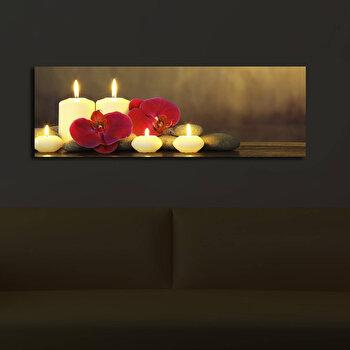 Tablou decorativ canvas cu leduriShining, 239SHN3208, Multicolor imagine