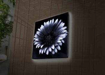 Tablou decorativ canvas cu leduri Ledda, 254LED4240, Multicolor imagine