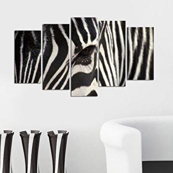 Tablou decorativ Charm, 223CHR1937, Multicolor elefant