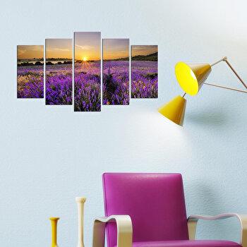 Tablou decorativ (5 Piese) Fascination, 224FSC2906, Multicolor elefant
