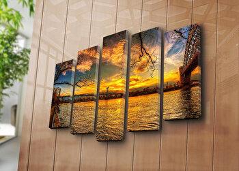 Tablou decorativ Sightly, 5 Piese, 252SGH1348, Multicolor elefant