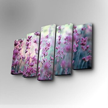 Tablou decorativ pe panza Art Five, 5 Piese, 747AFV1253, Multicolor