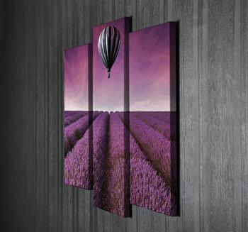 Tablou decorativ pe panza Majestic, 3 Piese, 257MJS1298, Multicolor imagine