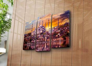 Tablou decorativ Bonanza,3 Piese, 242BNZ3245, Multicolor elefant