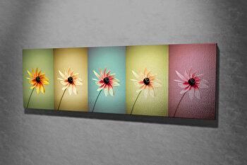 Tablou decorativ pe panza Majestic, 257MJS1274, Multicolor imagine