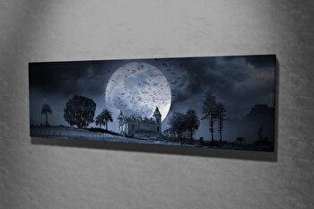 Tablou decorativ pe panza Majestic, 257MJS3271, Multicolor imagine